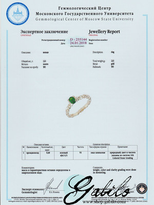 Ring mit Chromdiopsid